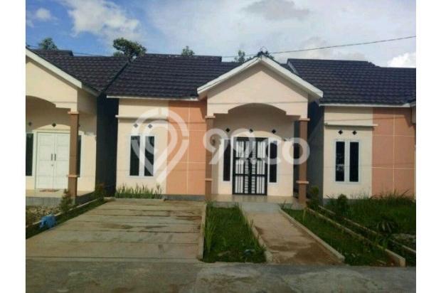Rumah mewah lokasi mewah harga termurah 11382772
