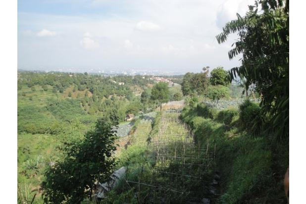 Rp42,5mily Tanah Dijual