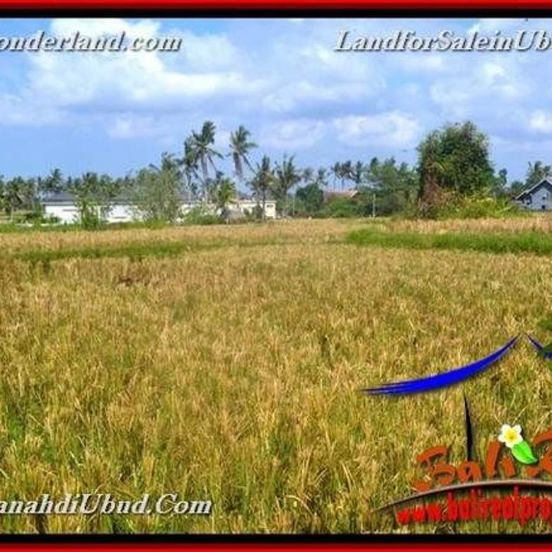 JUAL MURAH TANAH di UBUD 6,300 m2  View Tebing link Villa
