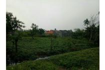 Tanah Murah Dijual 4000 meter di Cibodas Karawaci Tangerang