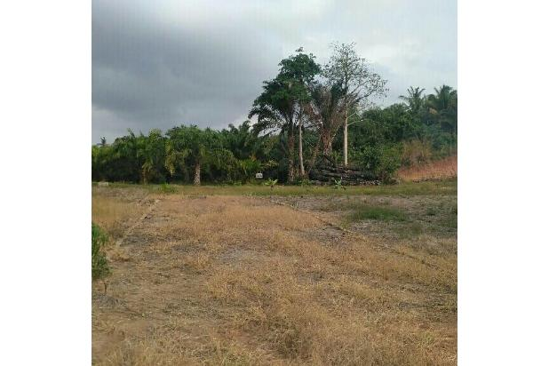 Rp75jt Tanah Dijual