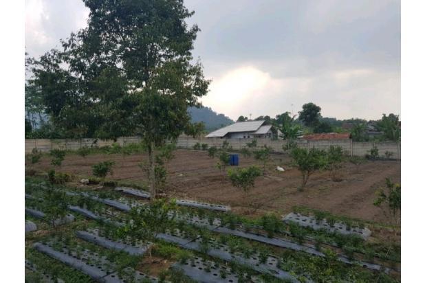 Rp3,57mily Tanah Dijual