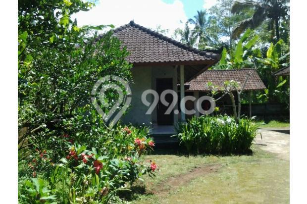 Bali house (3) 2409302
