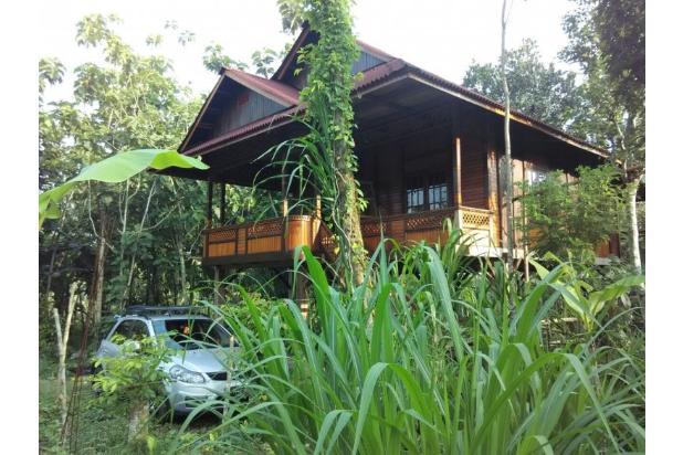 main house 2409338