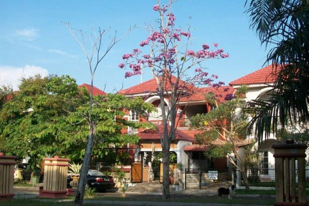 A Balinese styled FREEHOLD rare LANDED HOME in Dutamas Batam Indonesia 14803660