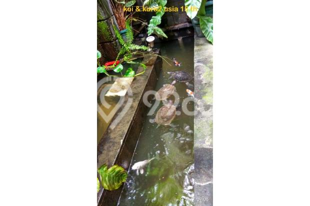 A Balinese styled FREEHOLD rare LANDED HOME in Dutamas Batam Indonesia 14803781