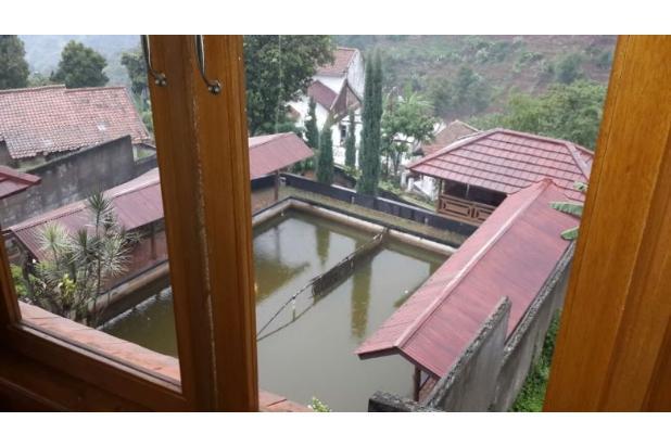 Rumah Villa Mewah Kayu Jati Asli Modern View Kota Bandung Indah 15026779