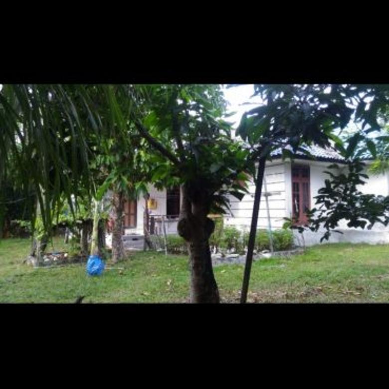 *Jual murah Rumah dengan halaman luas di  Meranti palangkara