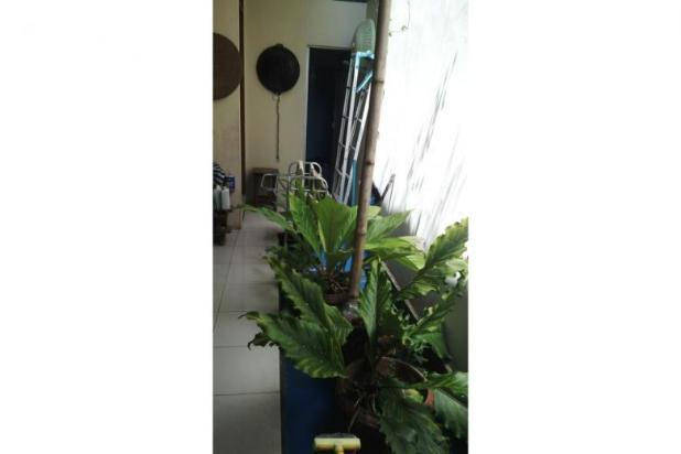 Dijual Rumah Mewah di Papringan Caturtunggal Dekat Kampus Atmajaya 12300655