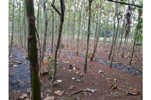 DiJual Tanah Kavling Di Kab Bekasi Lokasi Strategis, sertifikat SHM 13244022