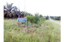 Tanah Dijual Jl.A.Yani dekat simpang Runtu SP4 Lada
