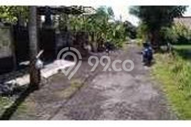 Dijual Rumah Baru Minimalis Bagus di Tukad Badung Denpasar 12397274