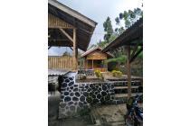 Murah, Rumah & Kandang Sapi - Domba di Ciwidey
