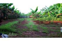 Tanah dijual cepat di Ciputat, Tangerang Selatan