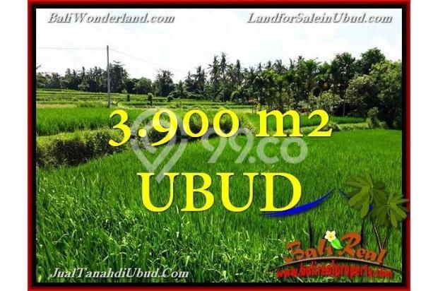 Potensial, 39 are di Ubud Pejeng 18273891