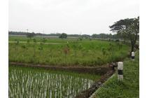 Tanah Komersil di Dekat Bandara Internasional Kertajati Majalengka Jawa
