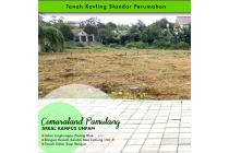 Tanah Kavling Cemaraland Dekat Kampus Unpam Hanya 4 Jt-an/m2