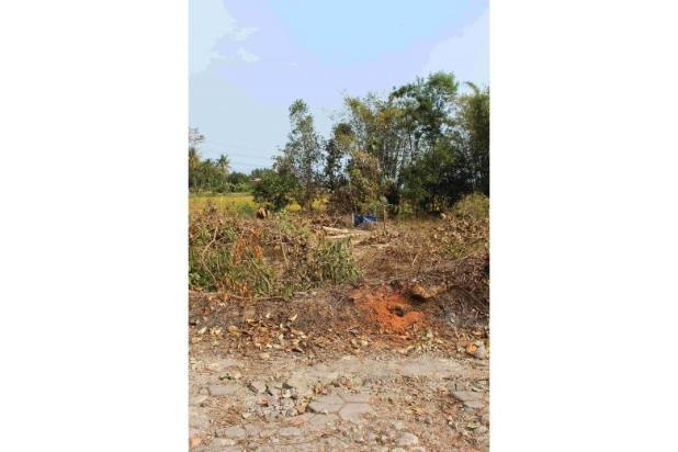 Nyicil Beli Tanah Kaveling, Perlahan Tapi Pasti Anda Pasti Punya Rumah 12898150