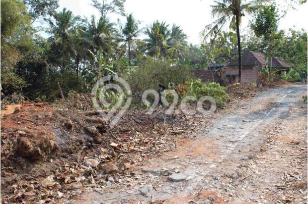 Nyicil Beli Tanah Kaveling, Perlahan Tapi Pasti Anda Pasti Punya Rumah 12898151