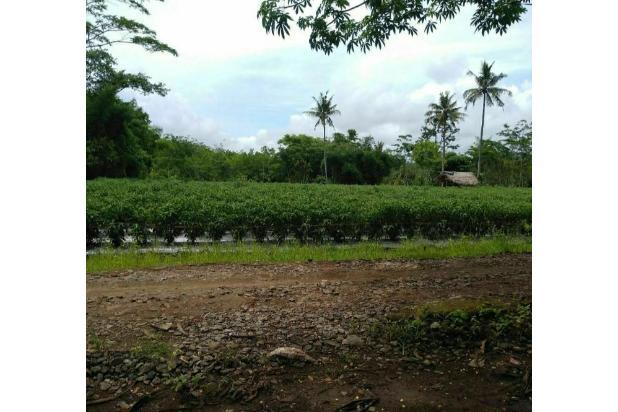 Rp4,63mily Tanah Dijual