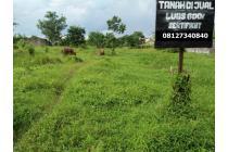 Tanah Lokasi Strategis di Daerah Berkembang Tanah Mas