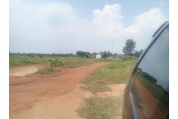 Rp159mily Tanah Dijual
