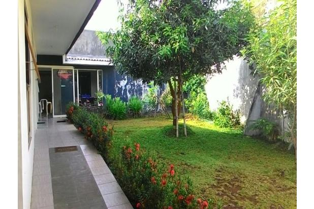 taman belakang rumah 11985744