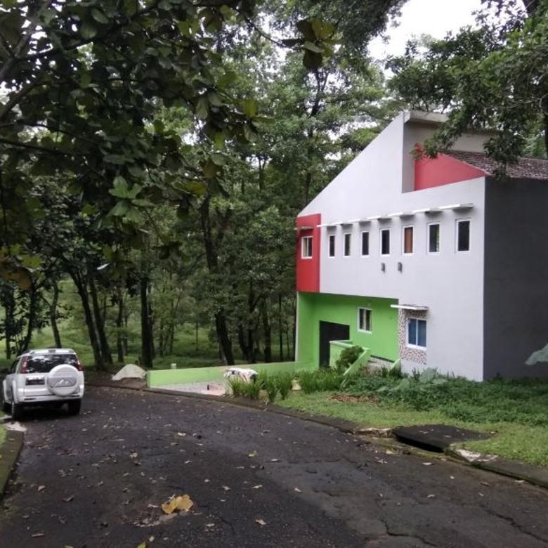 rumah sejuk rindang halaman luas