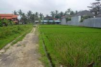 Peluang investasi tanah View lingkungan Villa  di Sentral Ubud MUBD675
