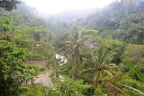 Tanah Prospek View Sawah dan los sungai di Ubud Tegalalang MUBD674