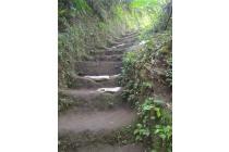 Tanah di UBUD Bali Sungai Deras Bisa Untuk WISATA Arung Jeram Harga NEGOO