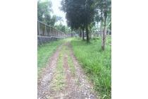 Tanah Cisarua Bogor - 1 Kompleks dengan Erema Village