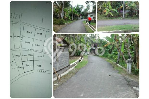 Tanah Kavling, Legalitas SHMP di Wates, Kulon Progo 17824939
