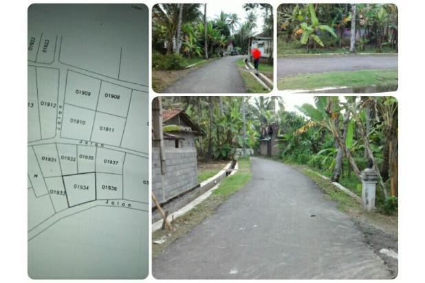 Tanah Kavling, Legalitas SHMP di Wates, Kulon Progo 17824943