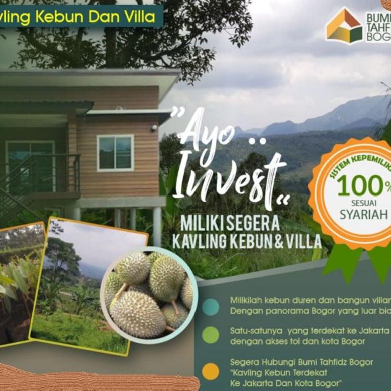 Tanah kebun pasti menguntungkan, siap panen durian tiap tahun