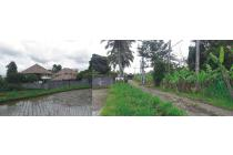Tanah di Ubud 4,9 Are, Cocok untuk investasi