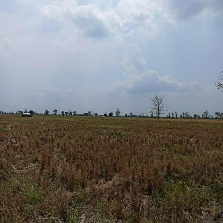 80 Ha Industrial Land Near Patimban International Port
