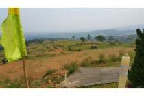 Kavling Murah di Kawasan Mewah Sentul (Cocok untuk Perkebunan)