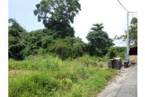Tanah Kavling 3,1 Are di Abian Base, Gianyar
