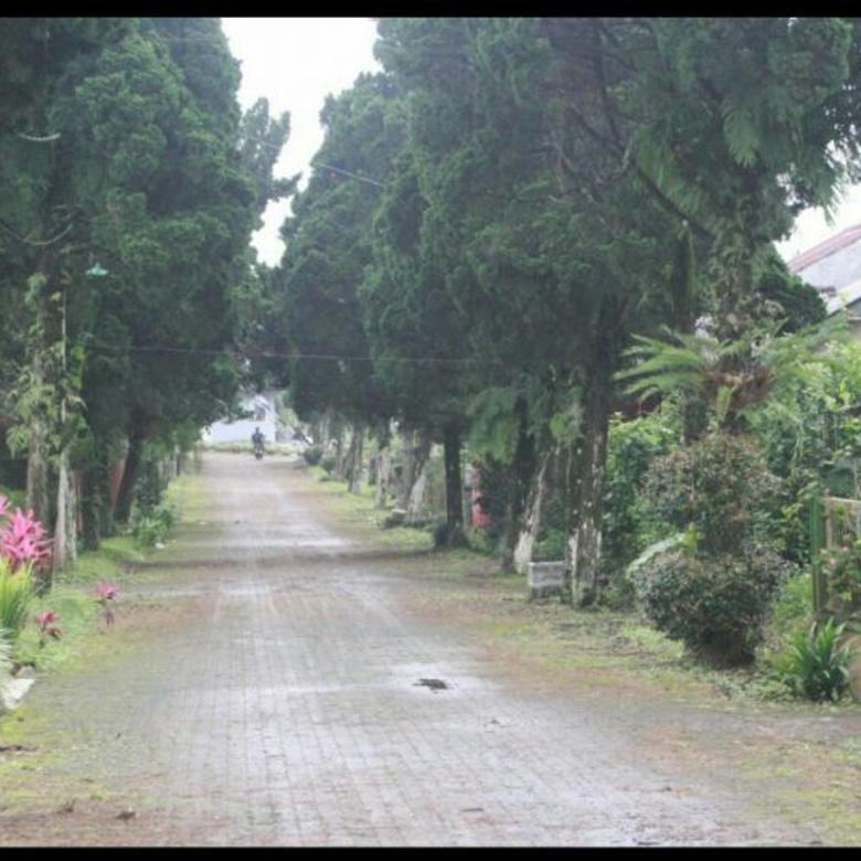 Vila-Jakarta Timur-4