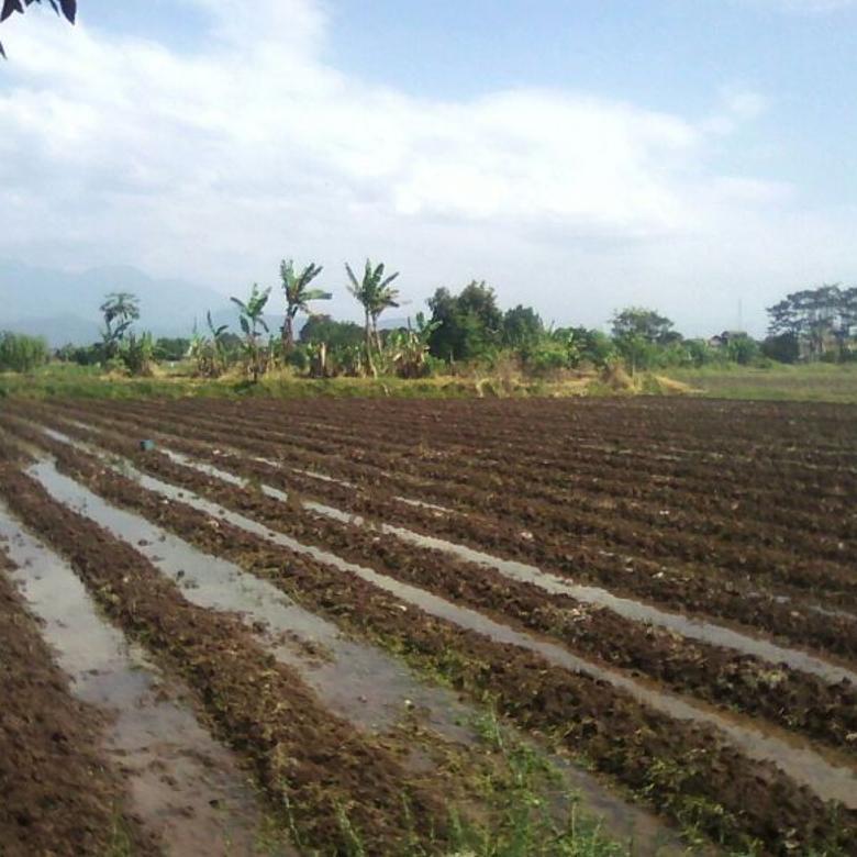 Dijual Tanah Strategis di Gedebage Dekat Summarecon Bandung Nego