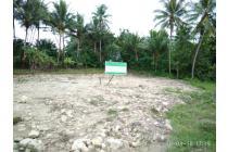 Tanah Kulonprogo Tak Semahal Rumah KPR, Bisa Tempo