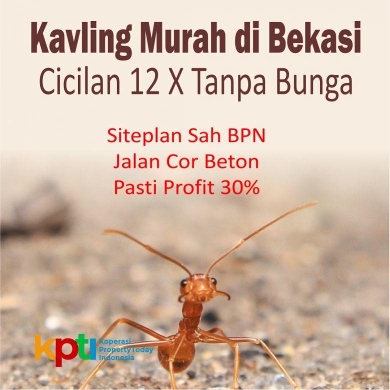 Tanah Kavling Mustika Jaya Bekasi 12X Bayar Tanpa Bunga