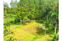 Dijual Villa Hitung Tanah, Lokasi Mainroad Lembang