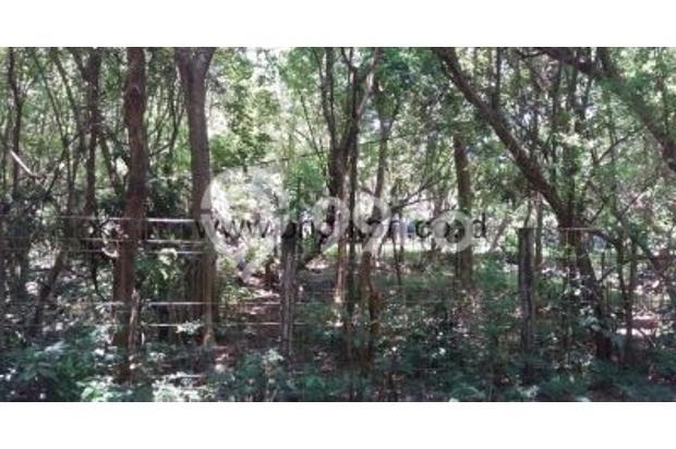 Dijual Tanah Strategis di Batu Pageh Ungasan Bali 17994647