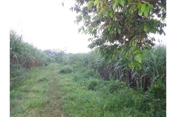 Rp6,67mily Tanah Dijual