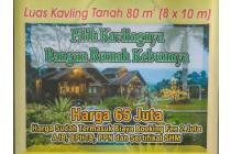 Rumah Kavling untuk Investasi Puncak Bogor