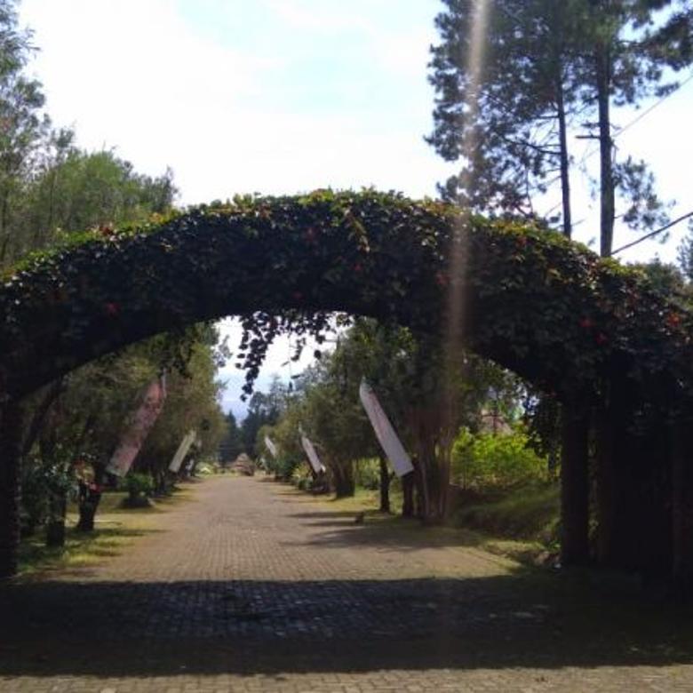 Vila-Cianjur-2