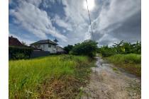 Bayar Cash bulan ini 6,5M saja dapat tanah luas 10are Loh !!! Tanah strategis dekat pantai cocok untuk villa 10 menit ke pantai canggu