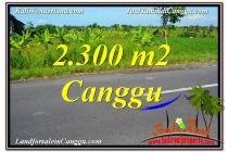 TANAH MURAH  di CANGGU BALI DIJUAL 2,300 m2  View sawah,gunung, lingkungan